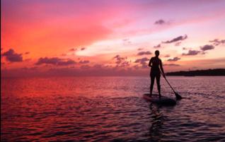 Stand-up-Paddling & Kayak Rental